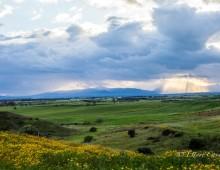 AGRITURISMO – CAMPIDARTE
